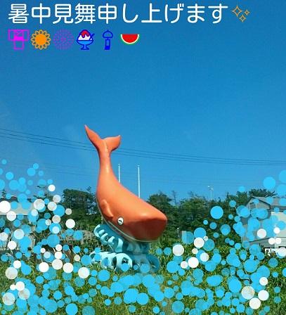 moblog_86983663.jpg