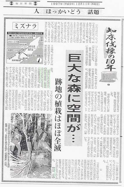 知床伐採京都新聞1987  (1)