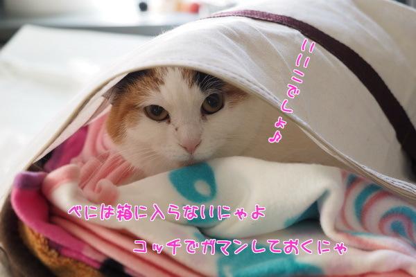 07いいこ