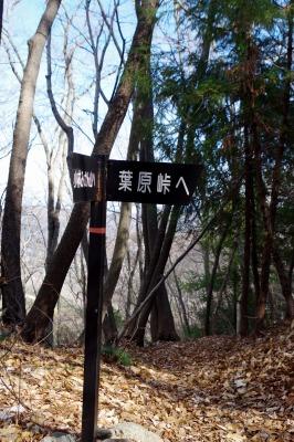 ☆IMGP4122