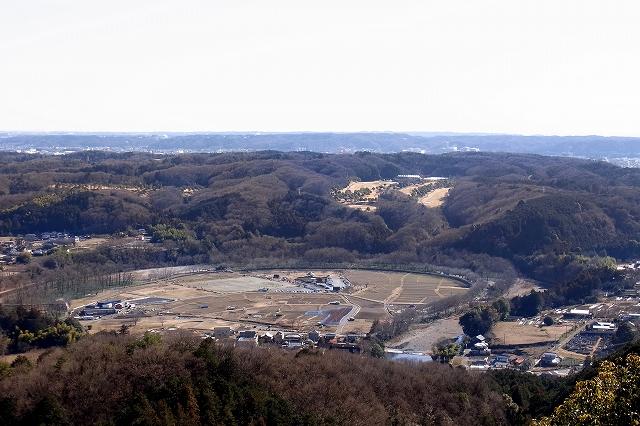 2013 01 xx 巾着田 日和田山から俯瞰