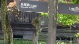 20150429中津川馬籠166