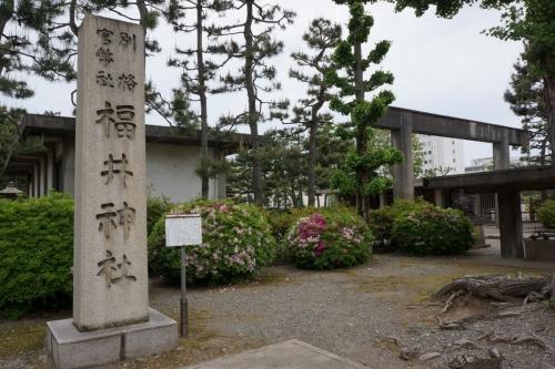 1福井神社 (1200x800)