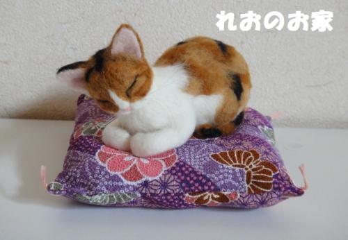 香箱三毛猫1