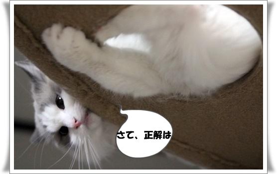 s-150501IMG_0962.jpg