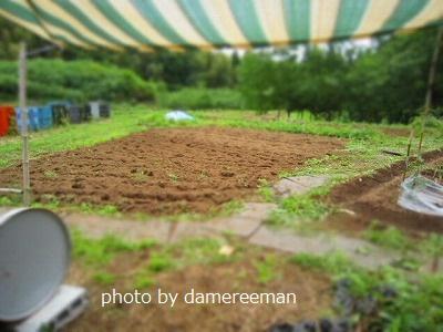 2015.5.17菜園10