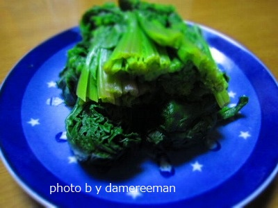 2015.1.31夕食2