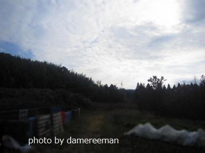 2015.2.7開墾地16