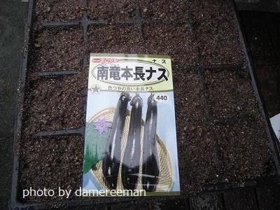 2015.2.22菜園14
