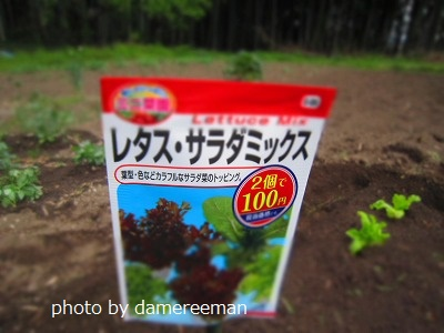 2015.4.18第三畑5