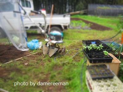 2015.4.19菜園11