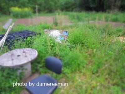 2015.4.29菜園5
