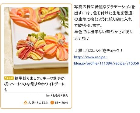 クッキーレシピブログ1