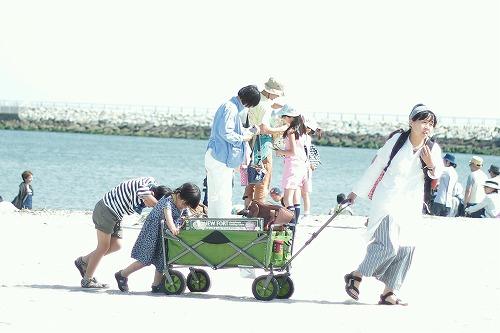 12015_photo_5.jpg