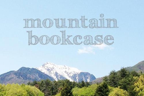 03_mountain bookcase