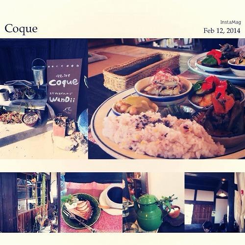 2015_coque_b1.jpg