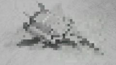 201506220253499ac.jpg