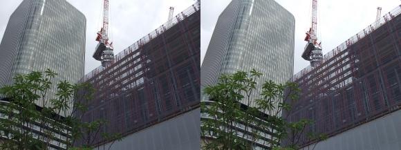大阪・中之島プロジェクト(朝日新聞ビルとフェスティバルホール)(平行法)