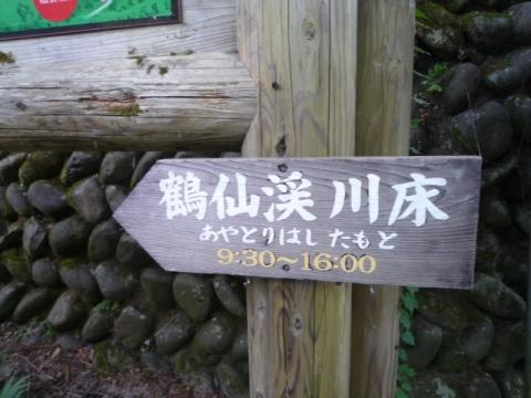 P1190141.jpg
