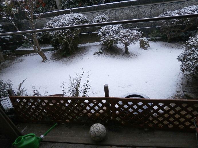 1218初雪1
