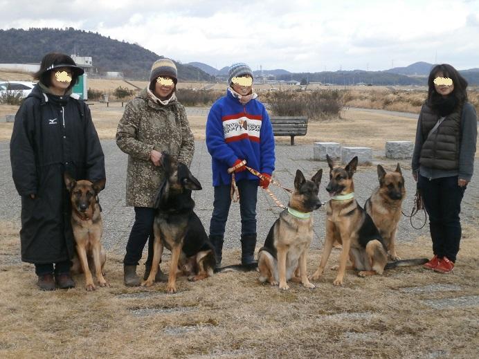 0131S犬記念撮影1