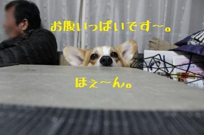 眠いです~。