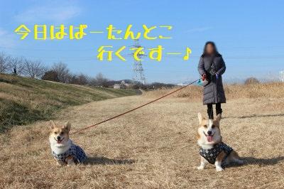 まずはお散歩。