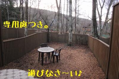 嬉しいお庭つき。