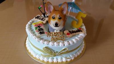 すっごいケーキ!