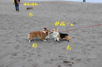 砂浜で遊ぶ3兄妹
