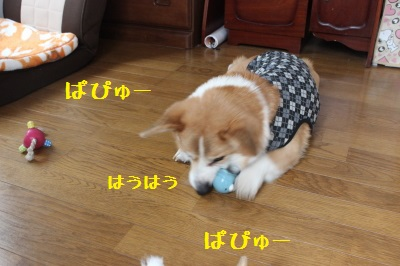 よそさまのおもちゃで遊ぶ。