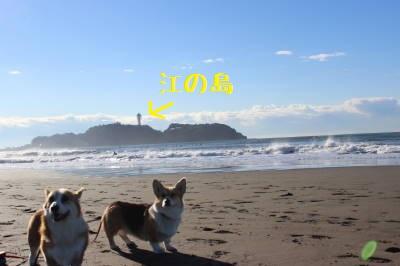 江の島とパチリ。