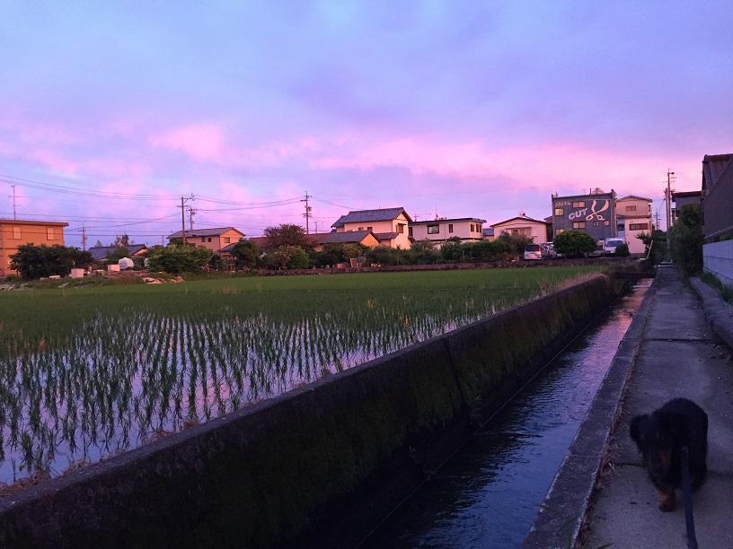 yuuyake3.jpg