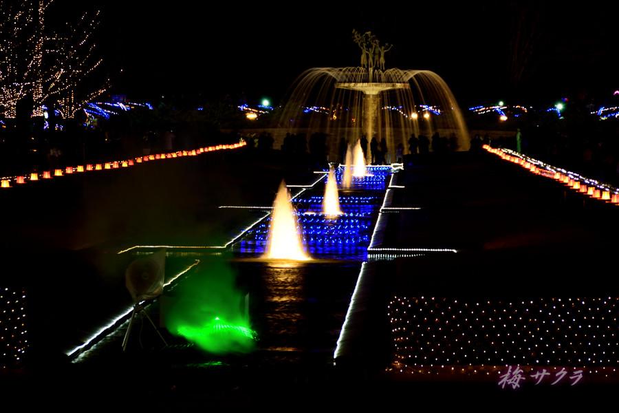 昭和記念公園のイルミ1(7)変更済