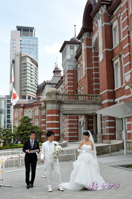東京駅5変更済