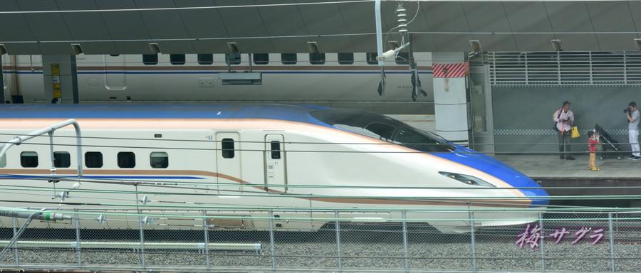 東京駅14変更済