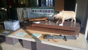猪名川町立ふるさと館