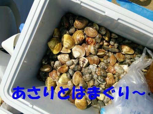 2015-05-31-13-37-22_photoA.jpg