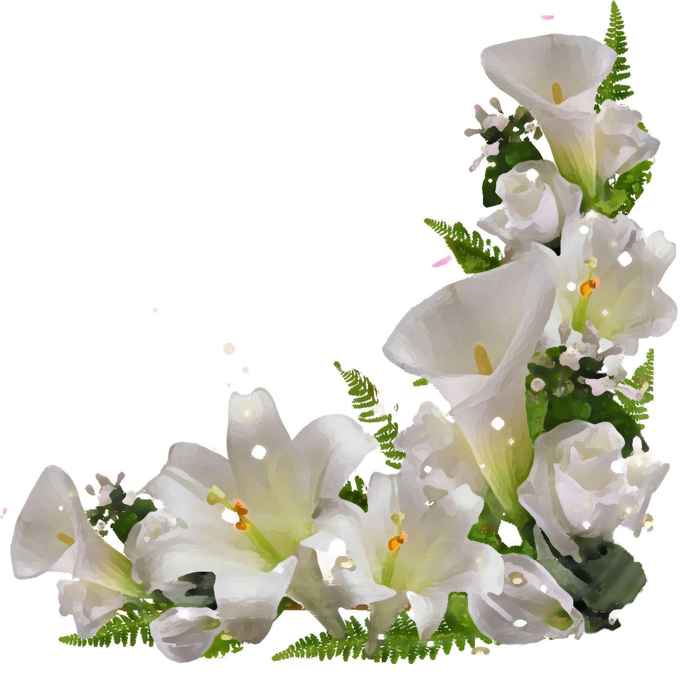 flower0953i.jpg