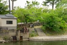 20150530_井川用水機場前対岸から