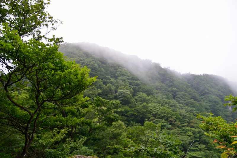 鷹ノ巣山 (4)