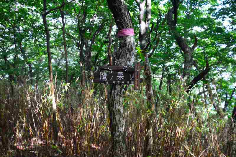 鷹ノ巣山 (3)