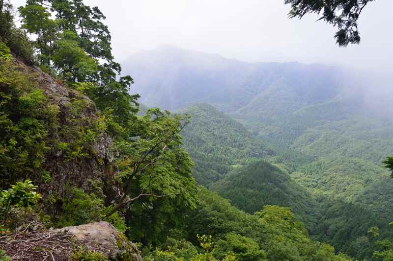 鷹ノ巣山 (11)