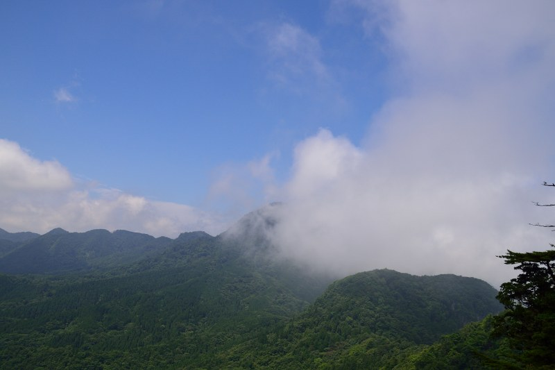 鷹ノ巣山 (18)