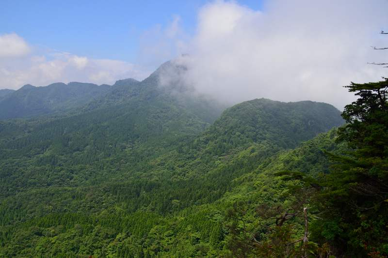 鷹ノ巣山 (17)