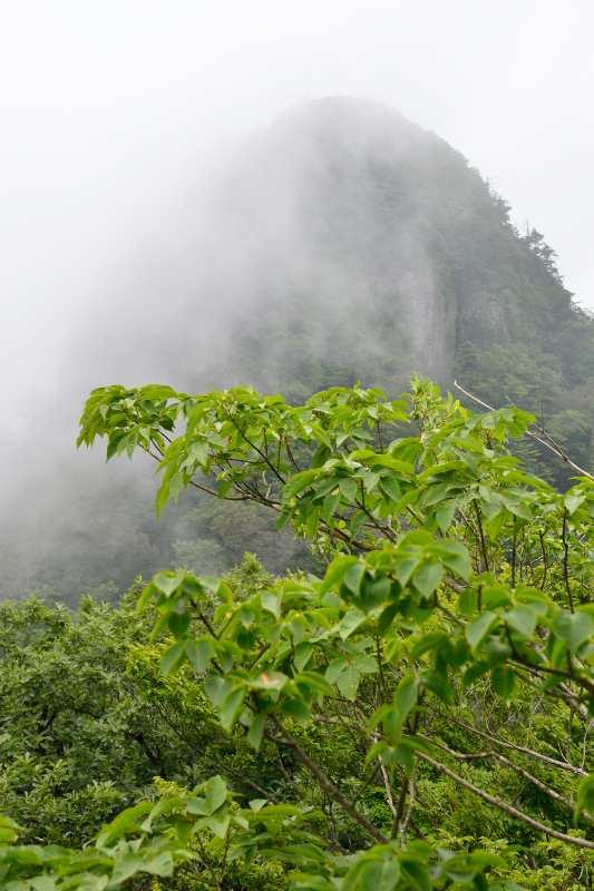鷹ノ巣山 (14)