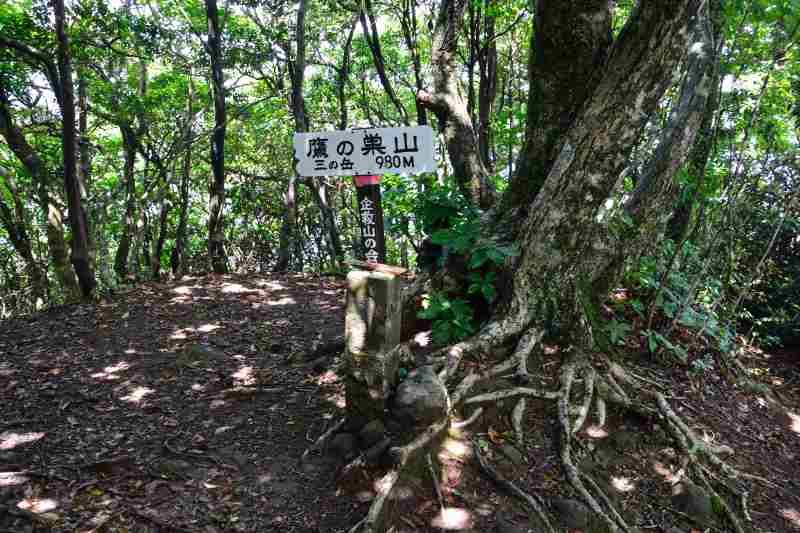 鷹ノ巣山 (20)