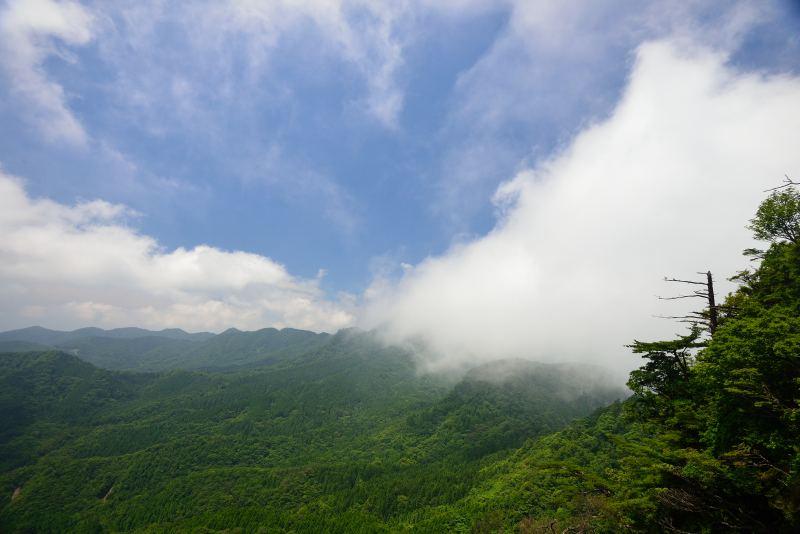 鷹ノ巣山 (26)