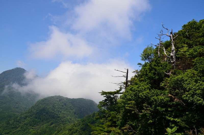 鷹ノ巣山 (23)
