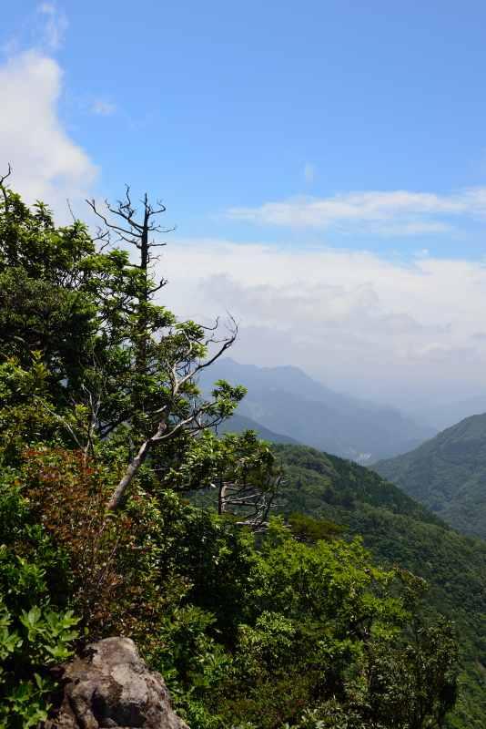 鷹ノ巣山 (31)
